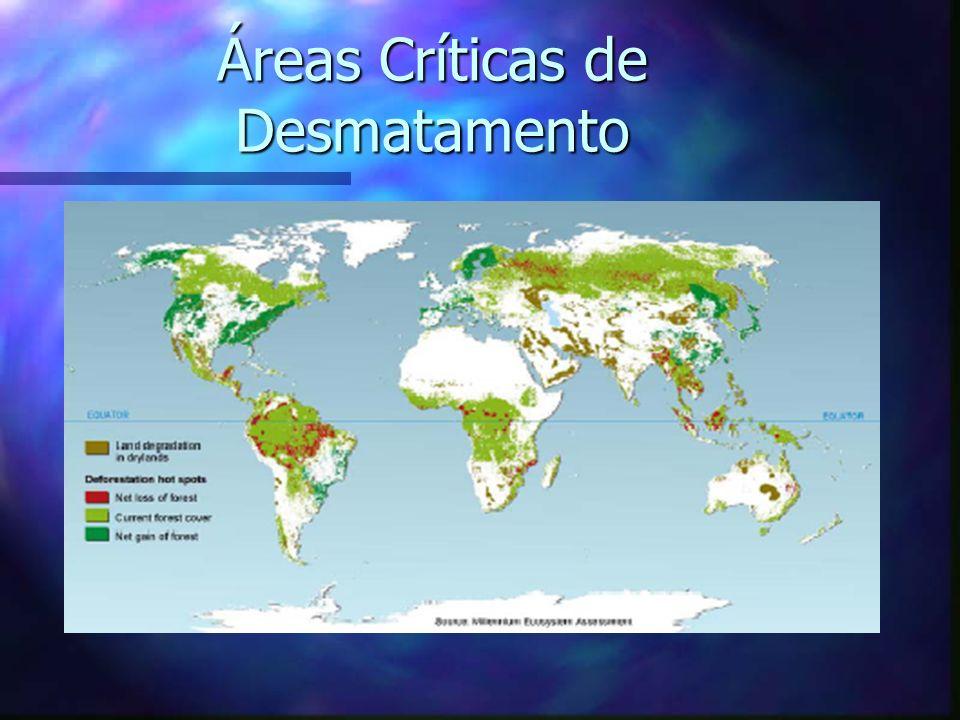 Áreas Críticas de Desmatamento