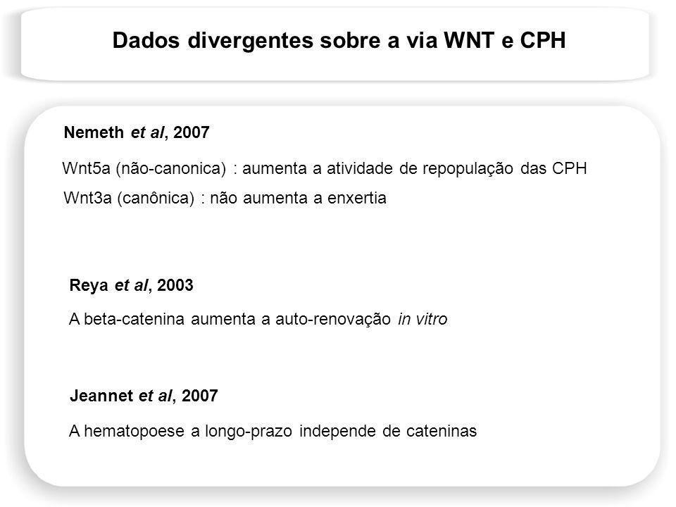 Dados divergentes sobre a via WNT e CPH