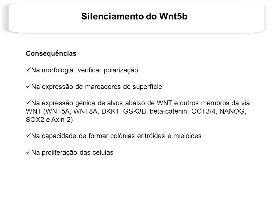 Silenciamento do Wnt5b Consequências