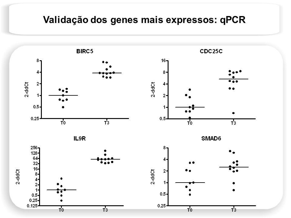 Validação dos genes mais expressos: qPCR