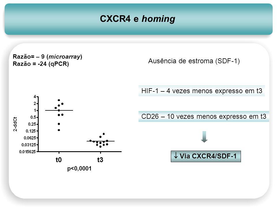 CXCR4 e homing Ausência de estroma (SDF-1)