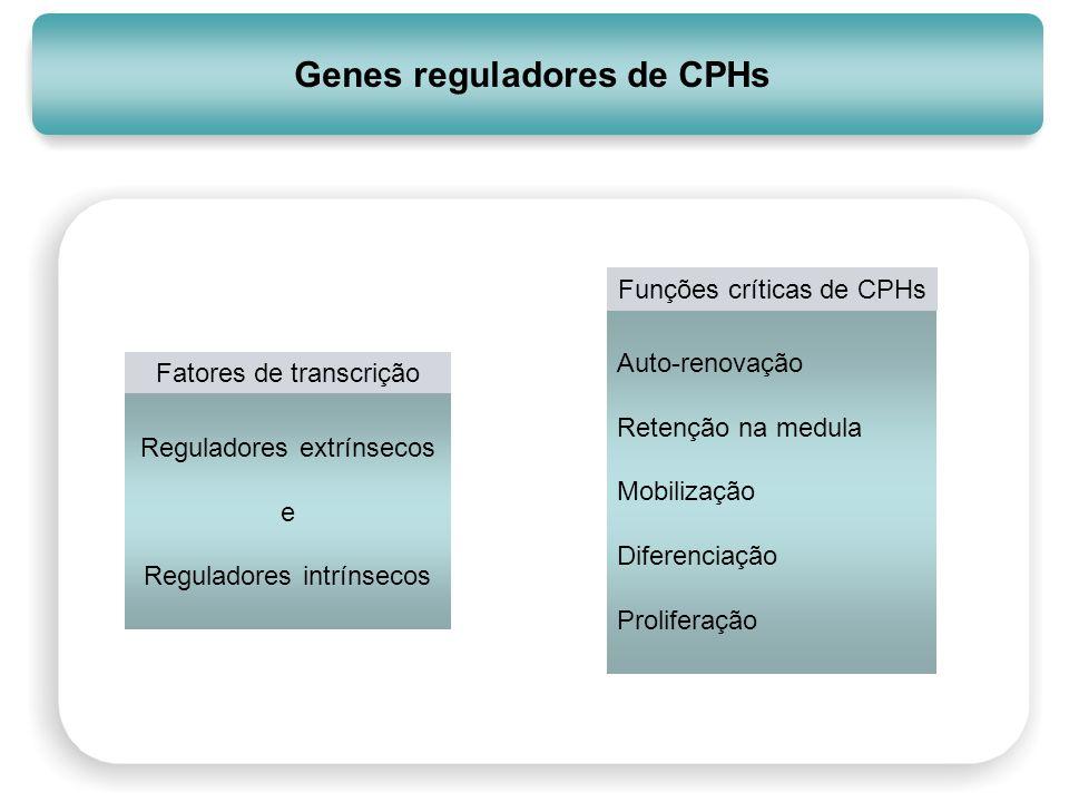 Genes reguladores de CPHs