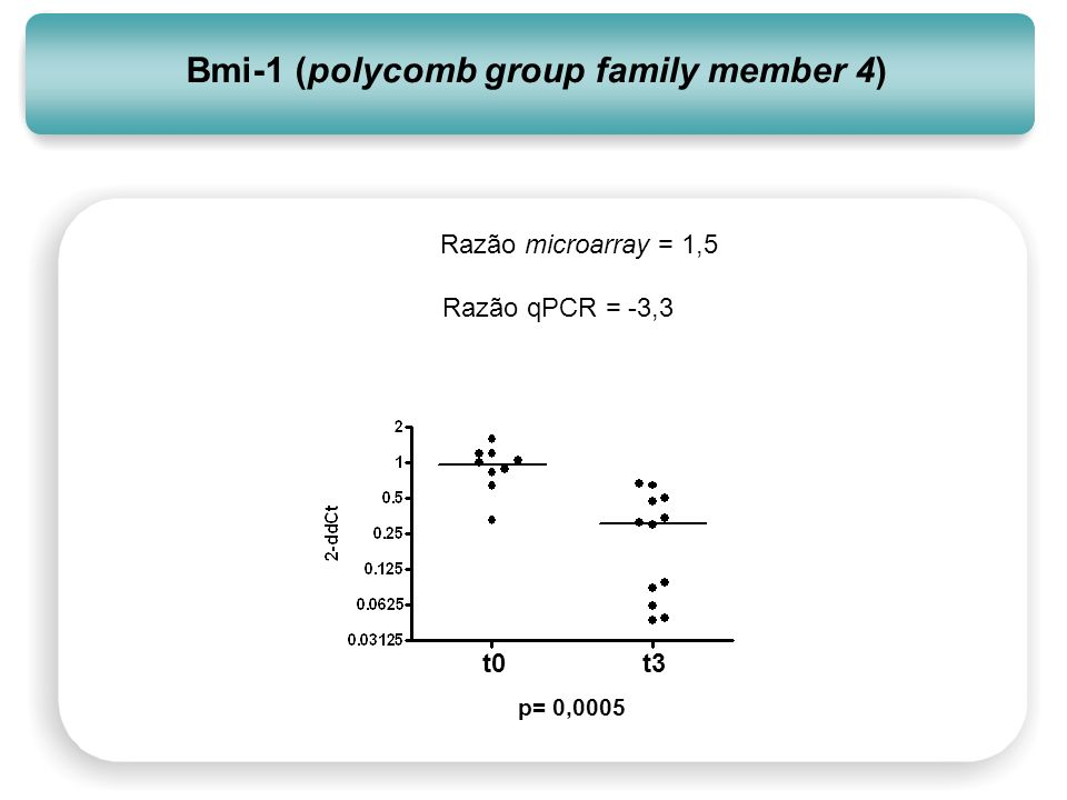 Bmi-1 (polycomb group family member 4)