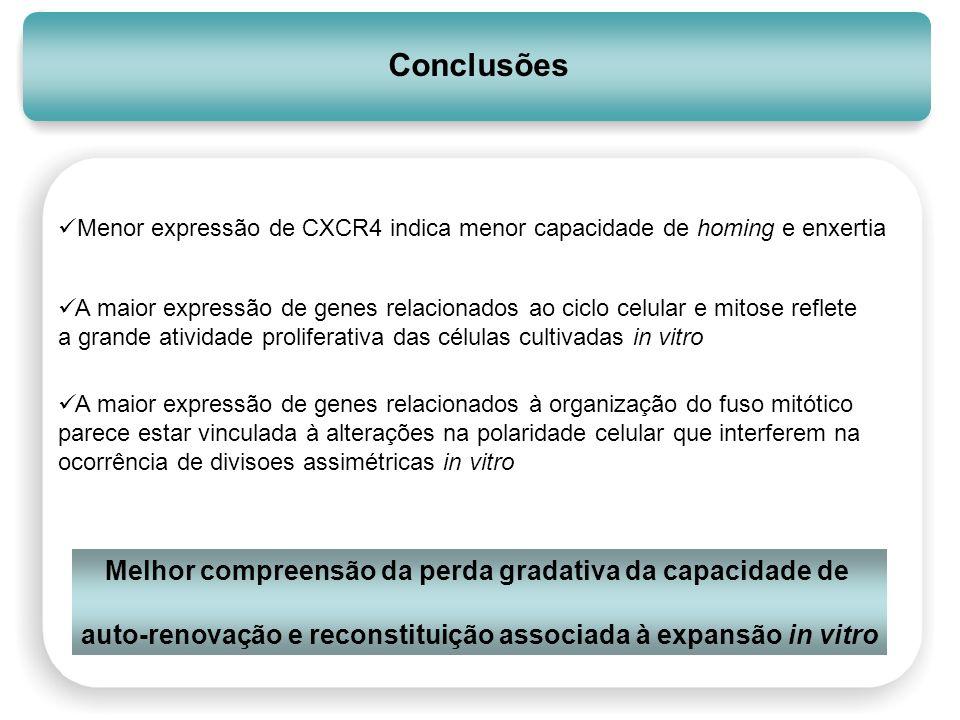 Conclusões Melhor compreensão da perda gradativa da capacidade de