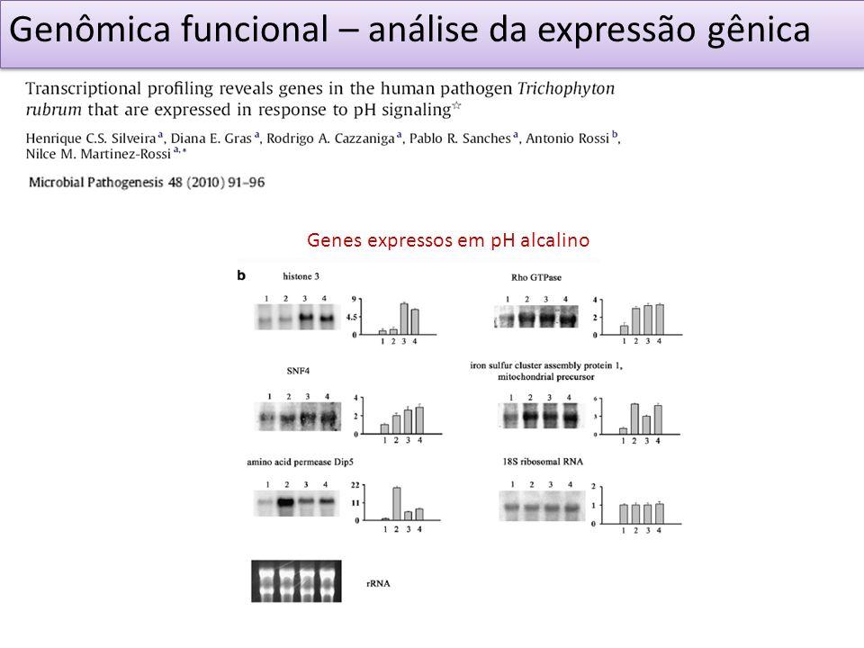 Genes expressos em pH alcalino