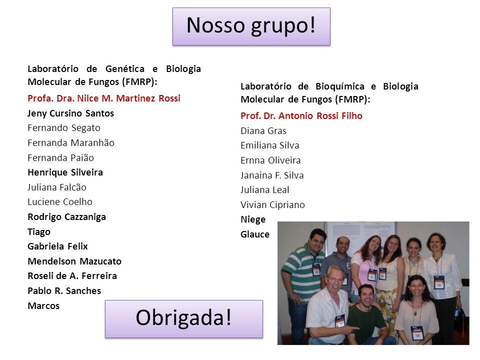 Nosso grupo! Laboratório de Genética e Biologia Molecular de Fungos (FMRP): Profa. Dra. Nilce M. Martinez Rossi.