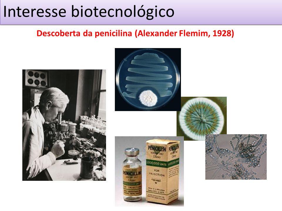 Interesse biotecnológico