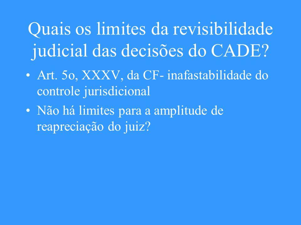 Quais os limites da revisibilidade judicial das decisões do CADE