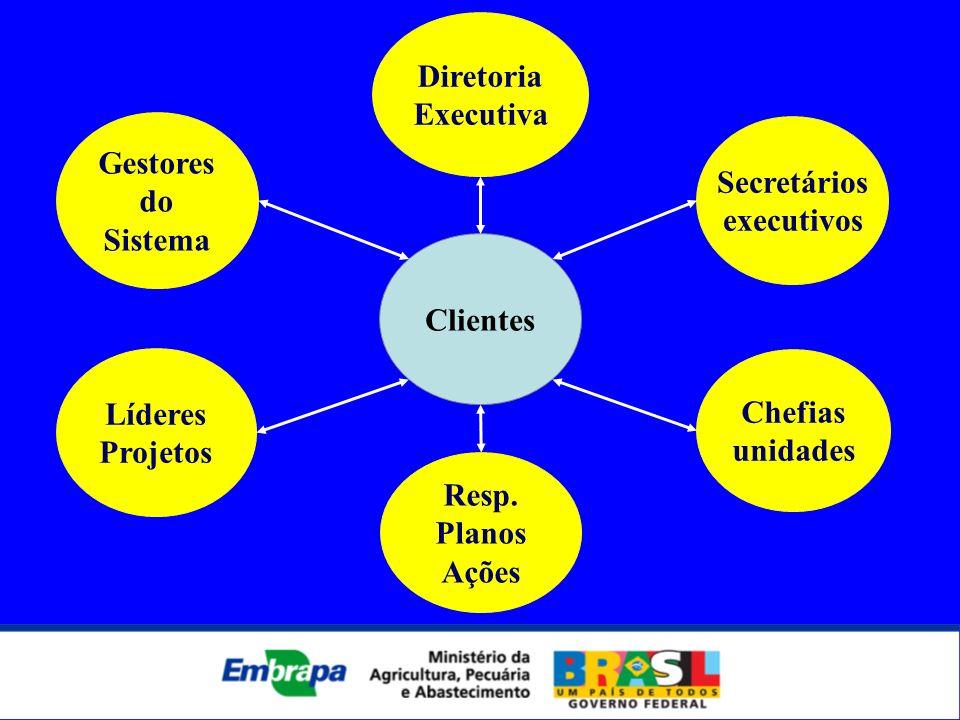 DiretoriaExecutiva. Gestores. do. Sistema. Secretários. executivos. Clientes. Líderes. Projetos. Chefias.