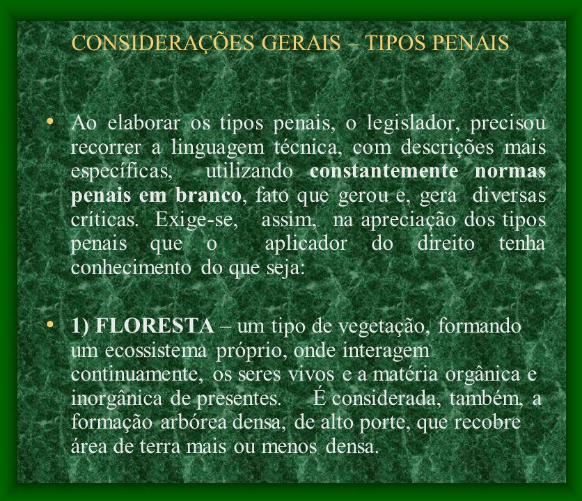 CONSIDERAÇÕES GERAIS – TIPOS PENAIS