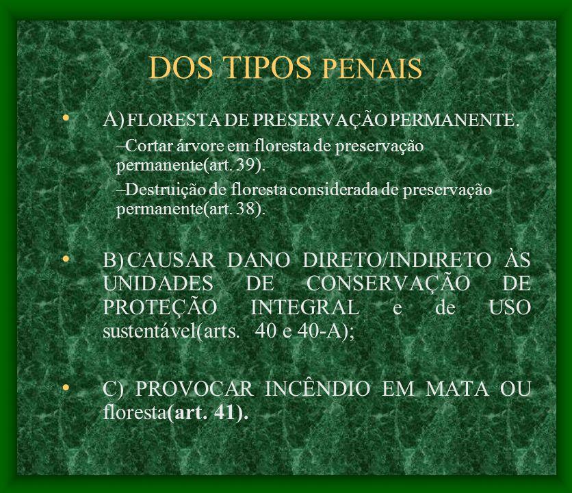 DOS TIPOS PENAIS A) FLORESTA DE PRESERVAÇÃO PERMANENTE.