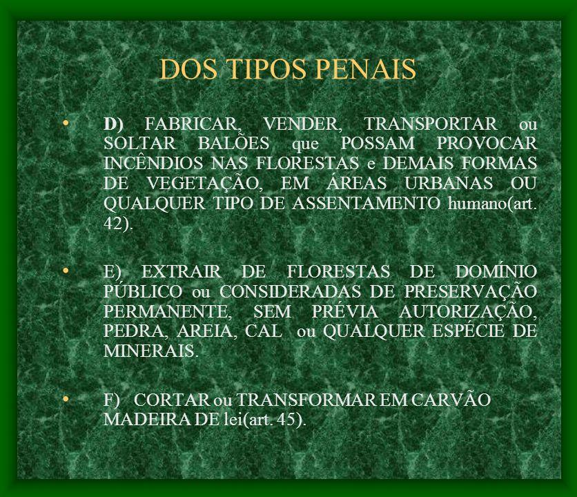 DOS TIPOS PENAIS
