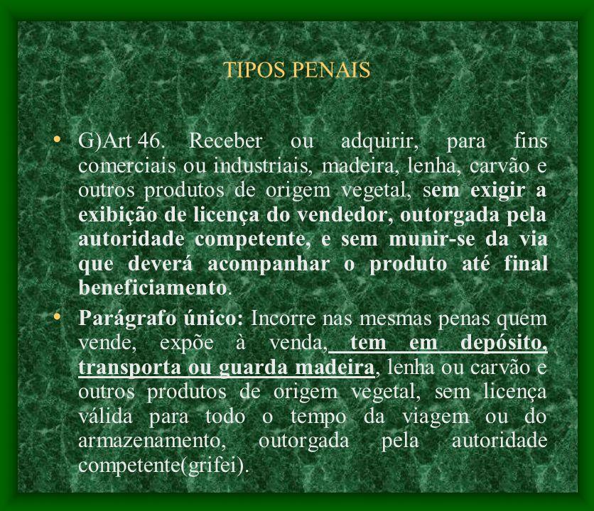 TIPOS PENAIS