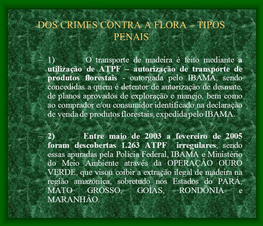 DOS CRIMES CONTRA A FLORA – TIPOS PENAIS