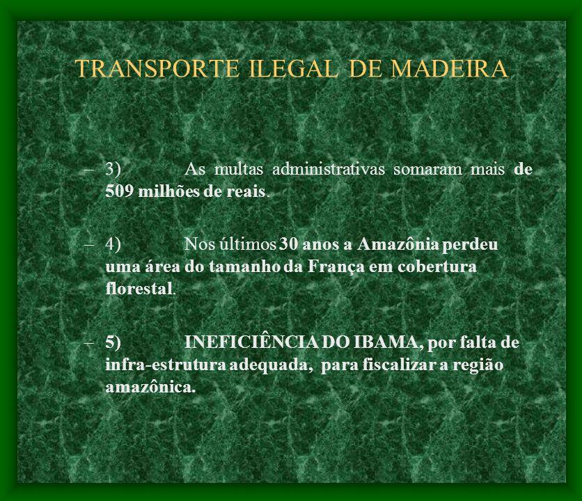 TRANSPORTE ILEGAL DE MADEIRA