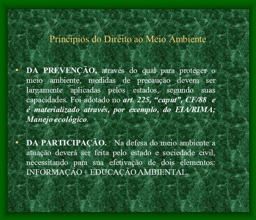 Princípios do Direito ao Meio Ambiente