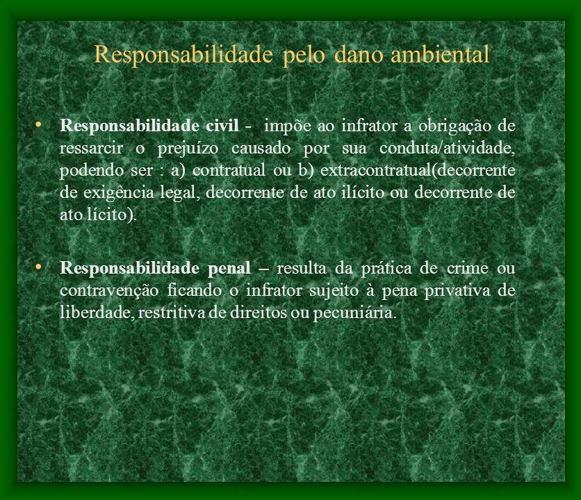 Responsabilidade pelo dano ambiental