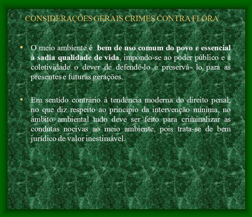 CONSIDERAÇÕES GERAIS CRIMES CONTRA FLORA