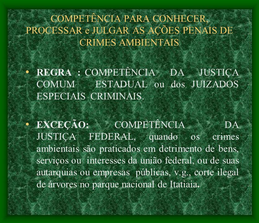 COMPETÊNCIA PARA CONHECER, PROCESSAR e JULGAR AS AÇÕES PENAIS DE CRIMES AMBIENTAIS