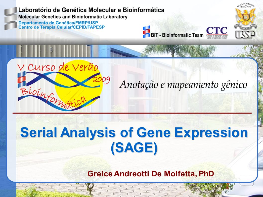 Serial Analysis of Gene Expression (SAGE)