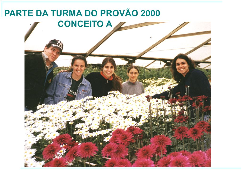 PARTE DA TURMA DO PROVÃO 2000
