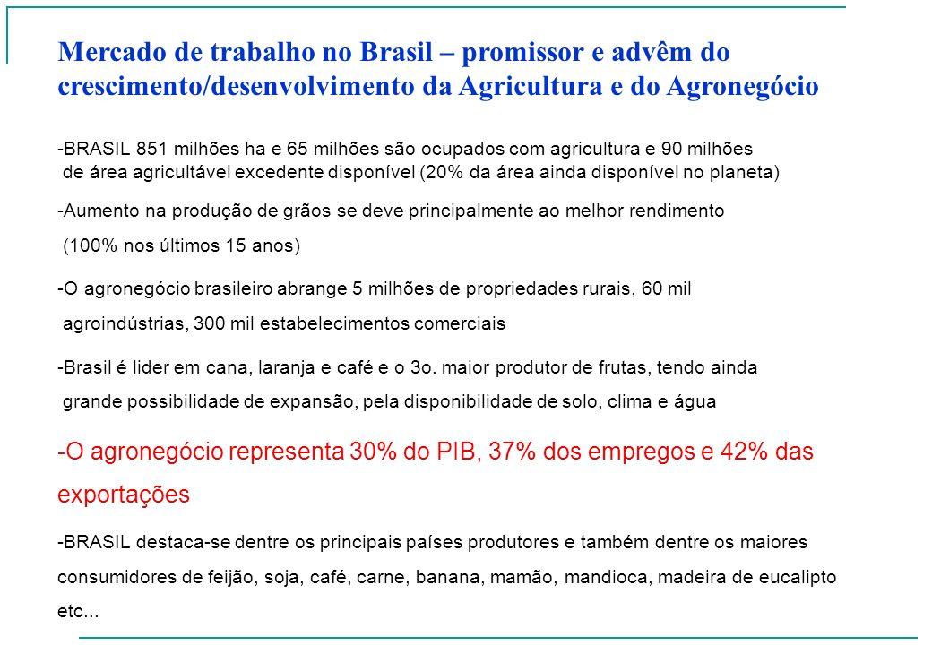 Mercado de trabalho no Brasil – promissor e advêm do crescimento/desenvolvimento da Agricultura e do Agronegócio