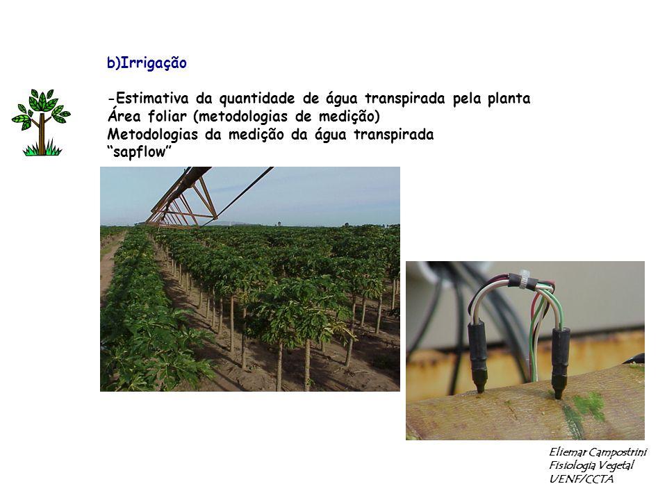 -Estimativa da quantidade de água transpirada pela planta