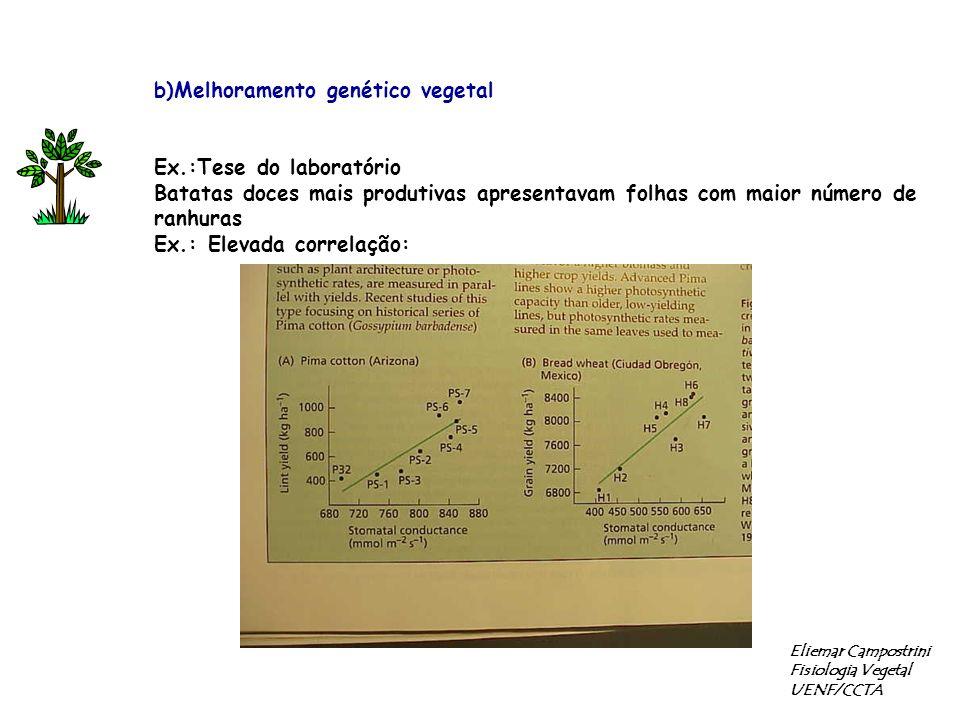 b)Melhoramento genético vegetal