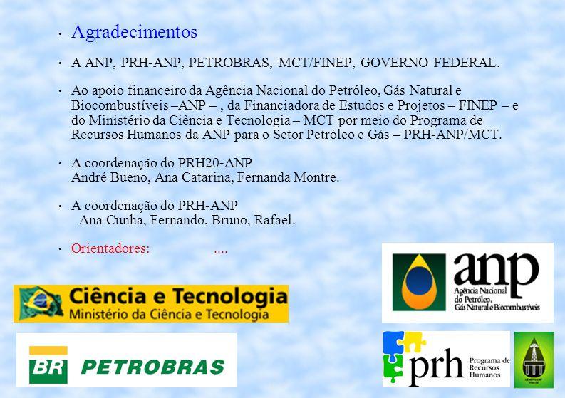 Agradecimentos A ANP, PRH-ANP, PETROBRAS, MCT/FINEP, GOVERNO FEDERAL.