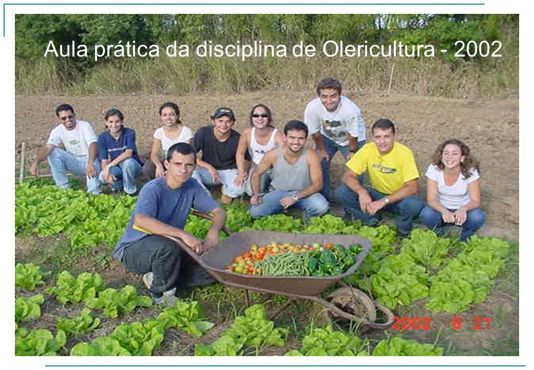 Aula prática da disciplina de Olericultura - 2002