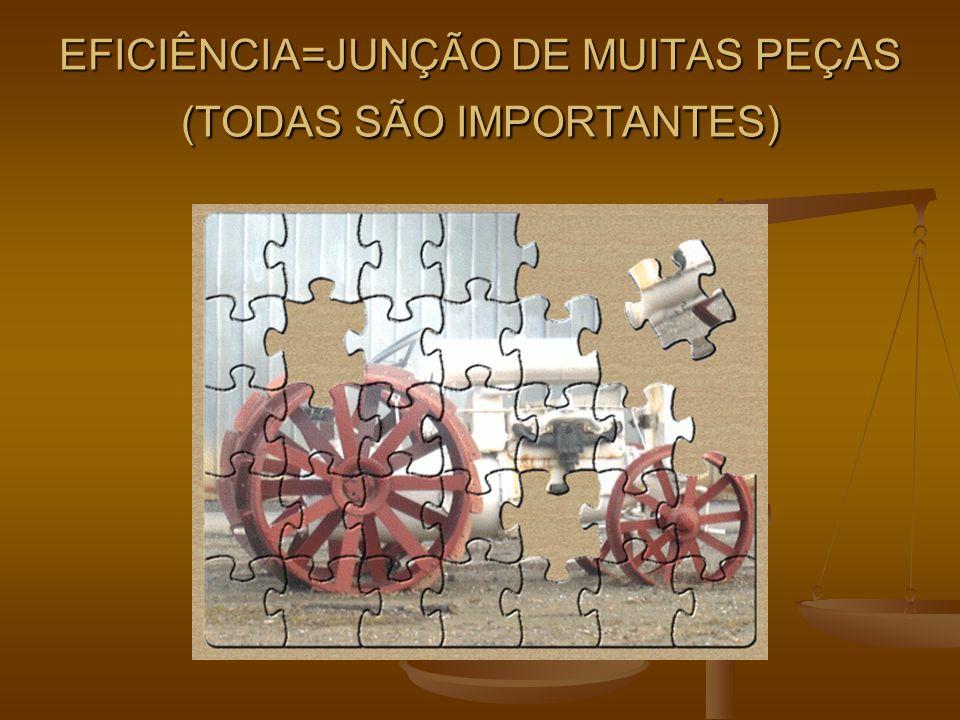 EFICIÊNCIA=JUNÇÃO DE MUITAS PEÇAS (TODAS SÃO IMPORTANTES)
