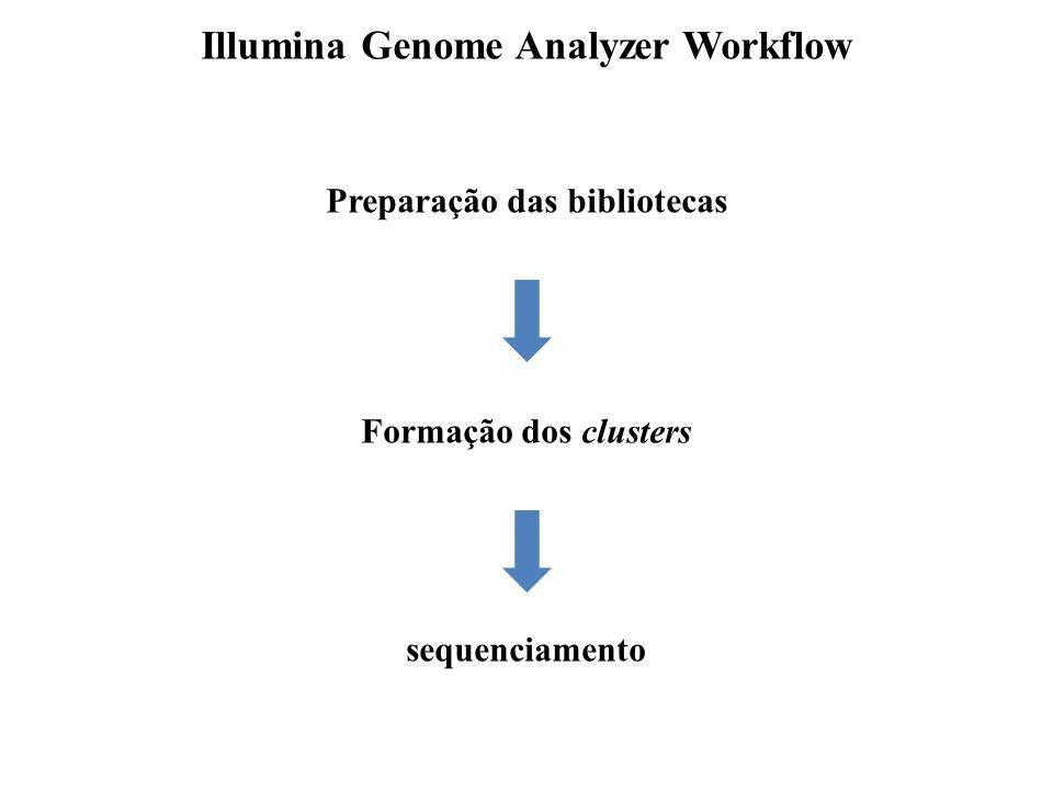 Illumina Genome Analyzer Workflow Preparação das bibliotecas