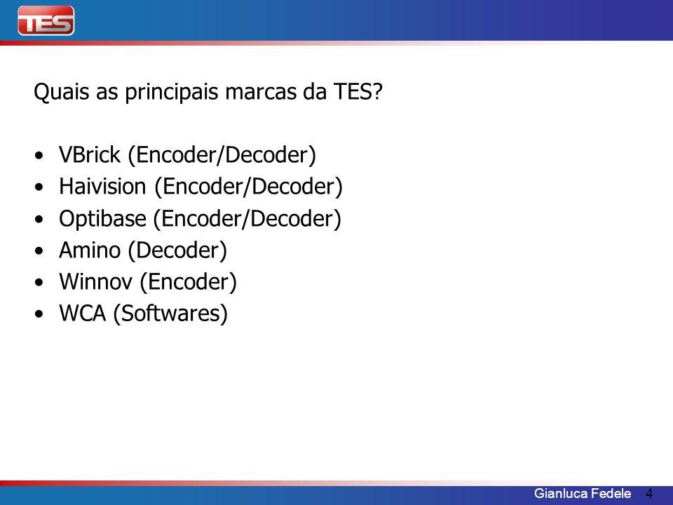 Quais as principais marcas da TES