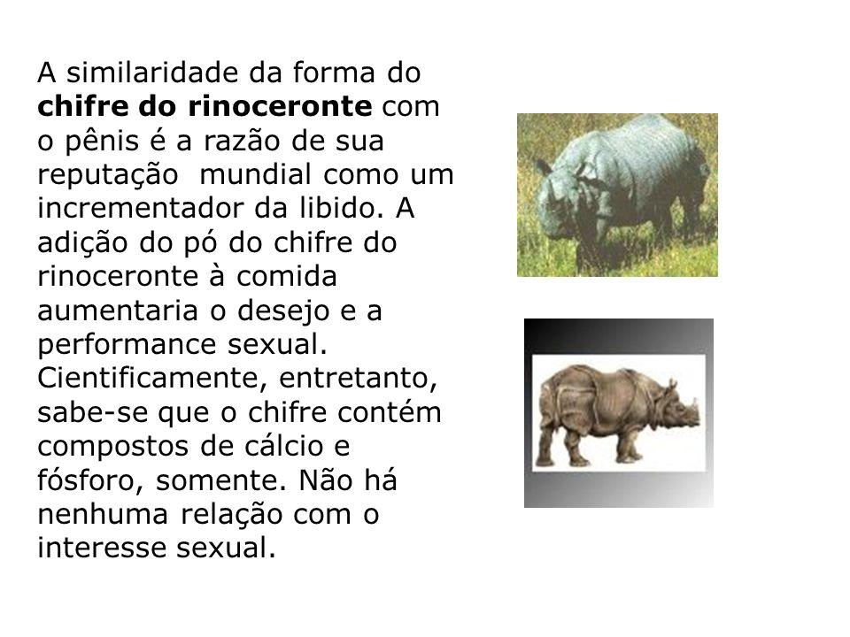 A similaridade da forma do chifre do rinoceronte com o pênis é a razão de sua reputação mundial como um incrementador da libido. A adição do pó do chifre do rinoceronte à comida aumentaria o desejo e a performance sexual. Cientificamente, entretanto, sabe-se que o chifre contém compostos de cálcio e fósforo, somente. Não há nenhuma relação com o interesse sexual.