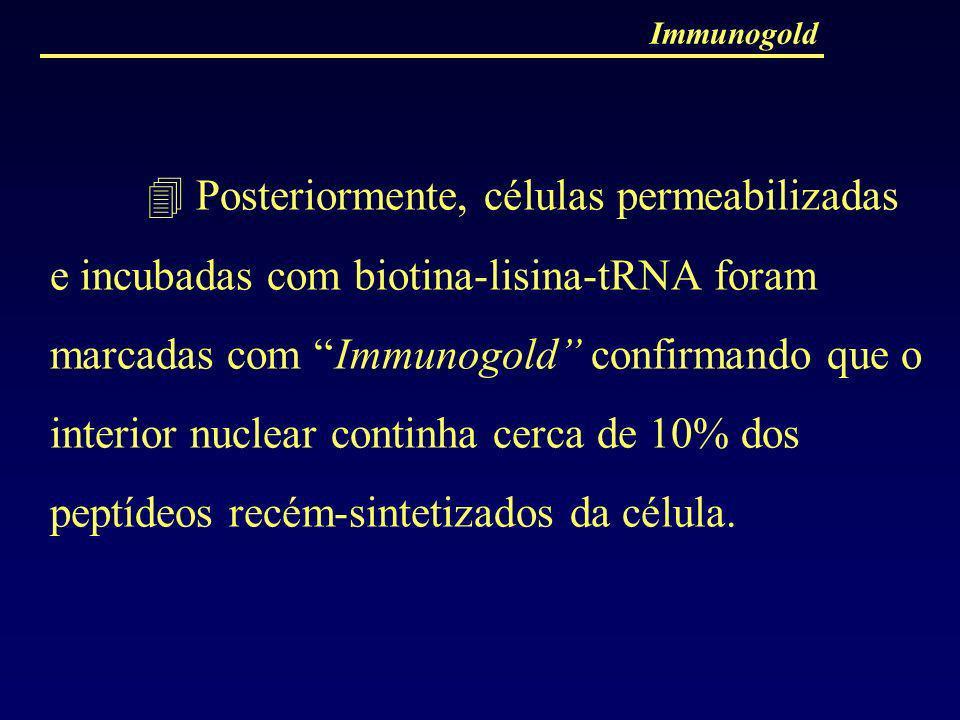 Immunogold