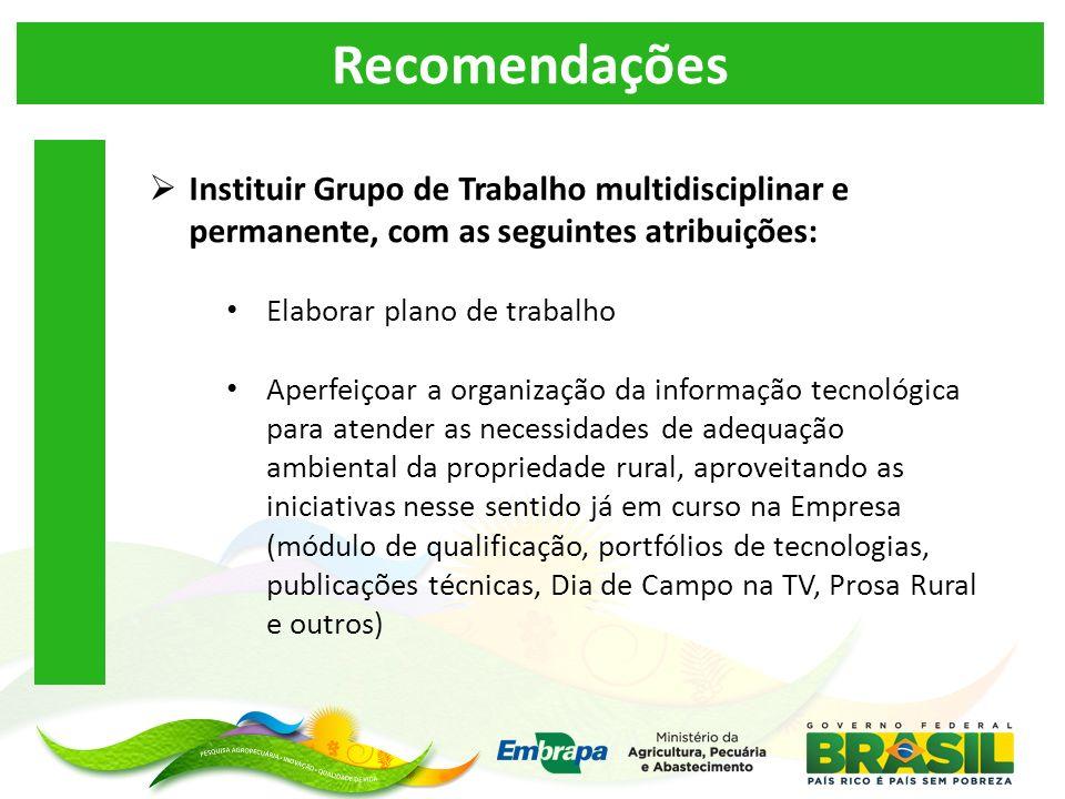 Recomendações Instituir Grupo de Trabalho multidisciplinar e permanente, com as seguintes atribuições: