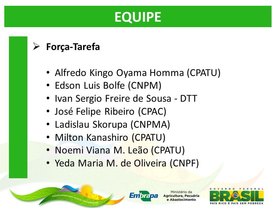 EQUIPE Força-Tarefa Alfredo Kingo Oyama Homma (CPATU)