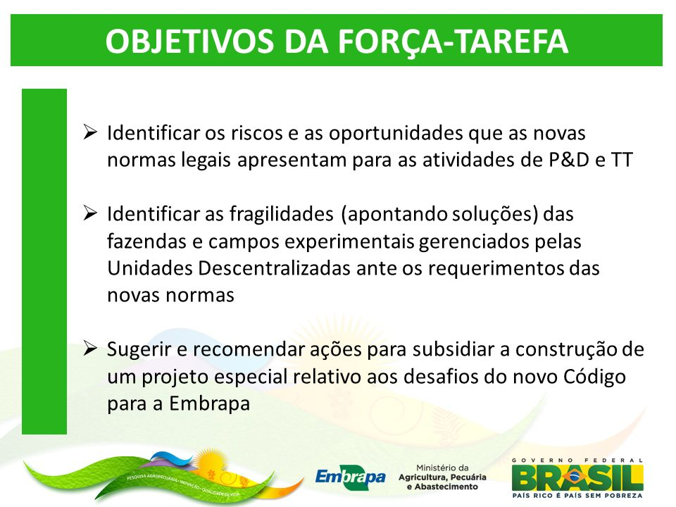 OBJETIVOS DA FORÇA-TAREFA