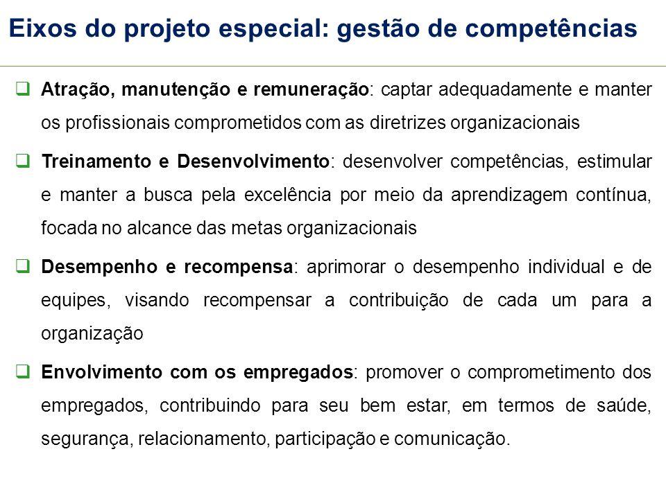 Eixos do projeto especial: gestão de competências