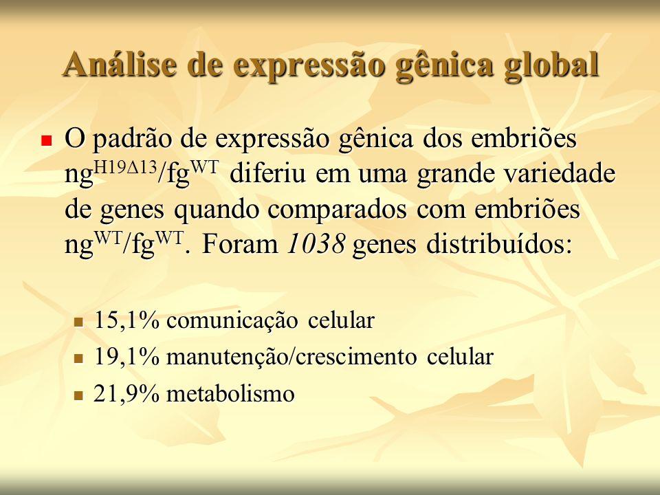 Análise de expressão gênica global