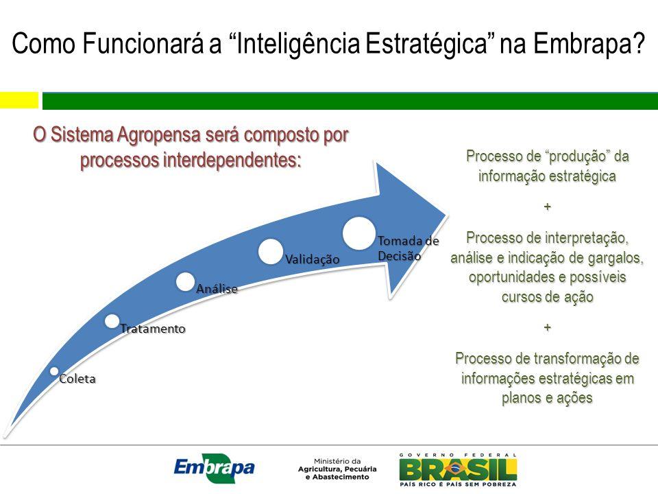 Como Funcionará a Inteligência Estratégica na Embrapa