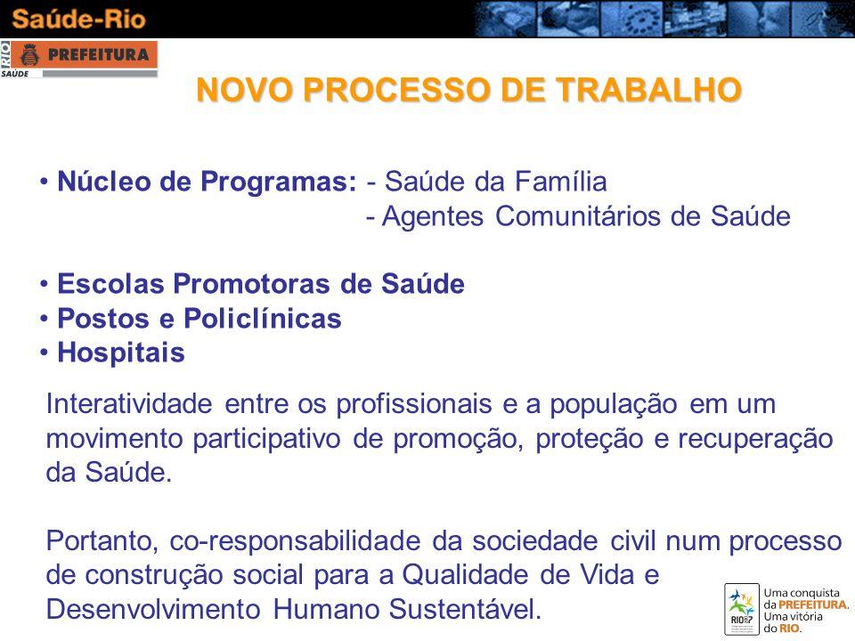 NOVO PROCESSO DE TRABALHO