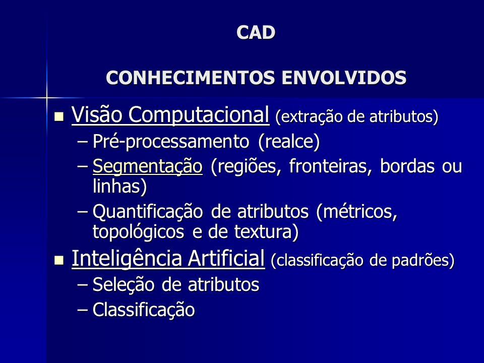 CAD CONHECIMENTOS ENVOLVIDOS