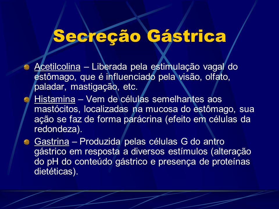 Secreção Gástrica Acetilcolina – Liberada pela estimulação vagal do estômago, que é influenciado pela visão, olfato, paladar, mastigação, etc.