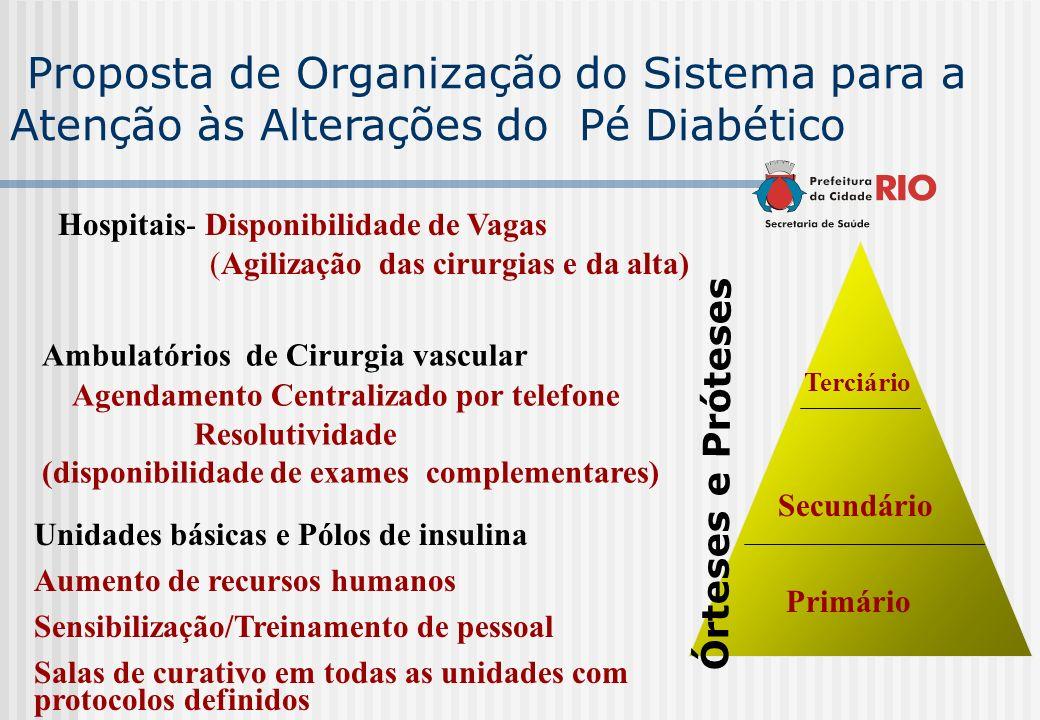 Proposta de Organização do Sistema para a Atenção às Alterações do Pé Diabético