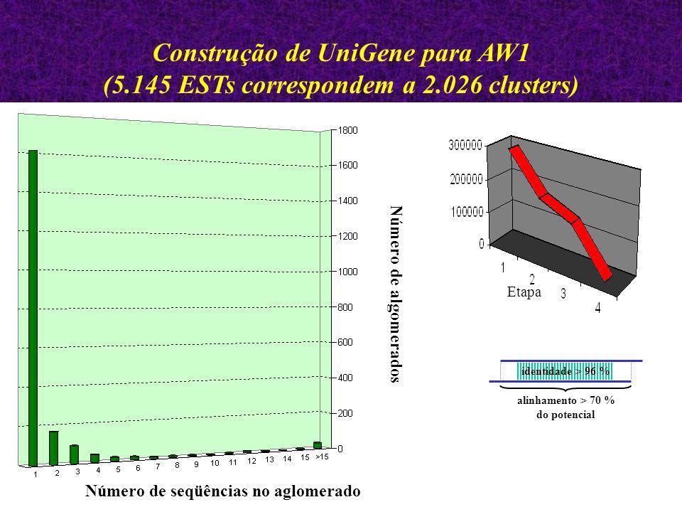 Construção de UniGene para AW1