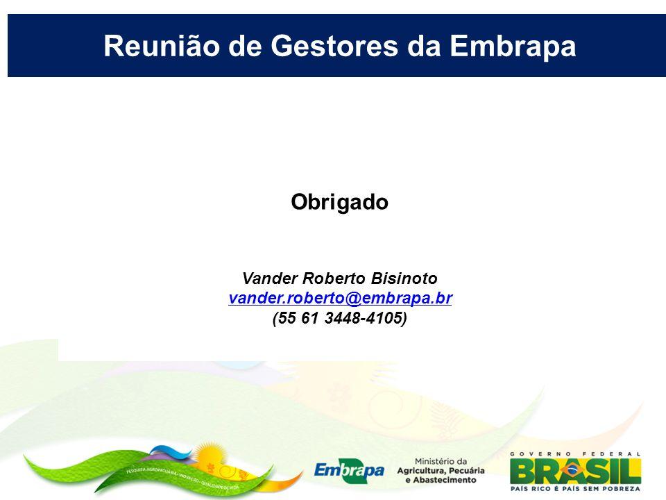 Reunião de Gestores da Embrapa Vander Roberto Bisinoto