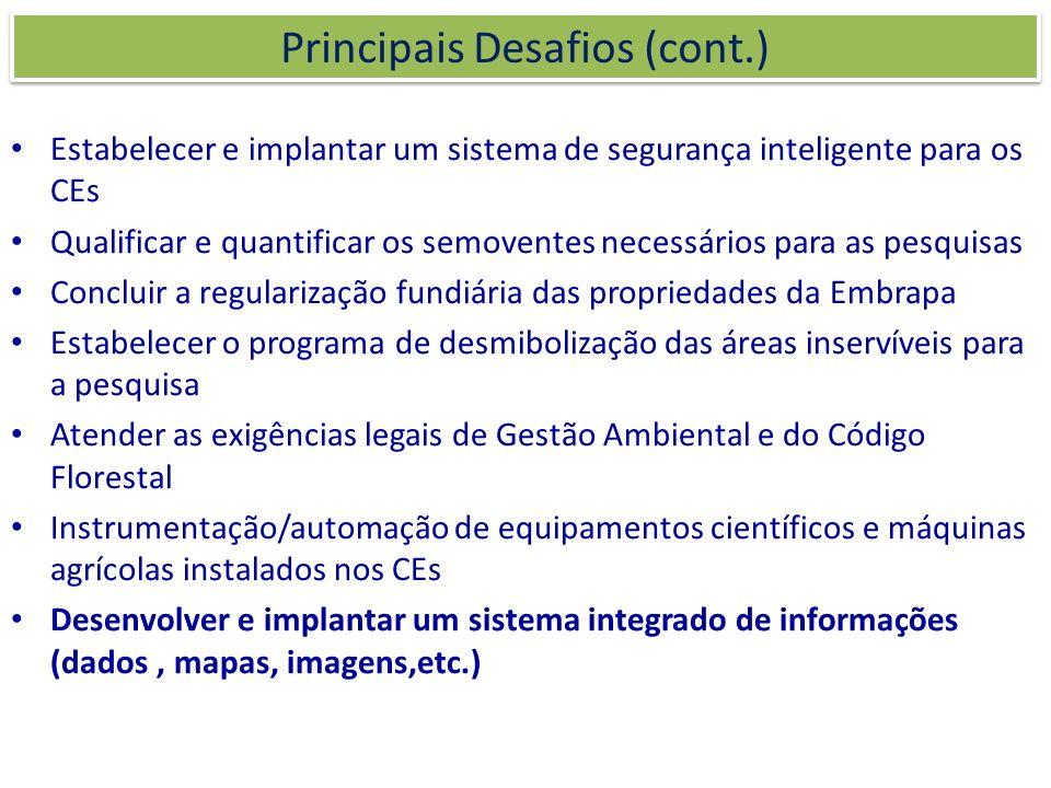Principais Desafios (cont.)
