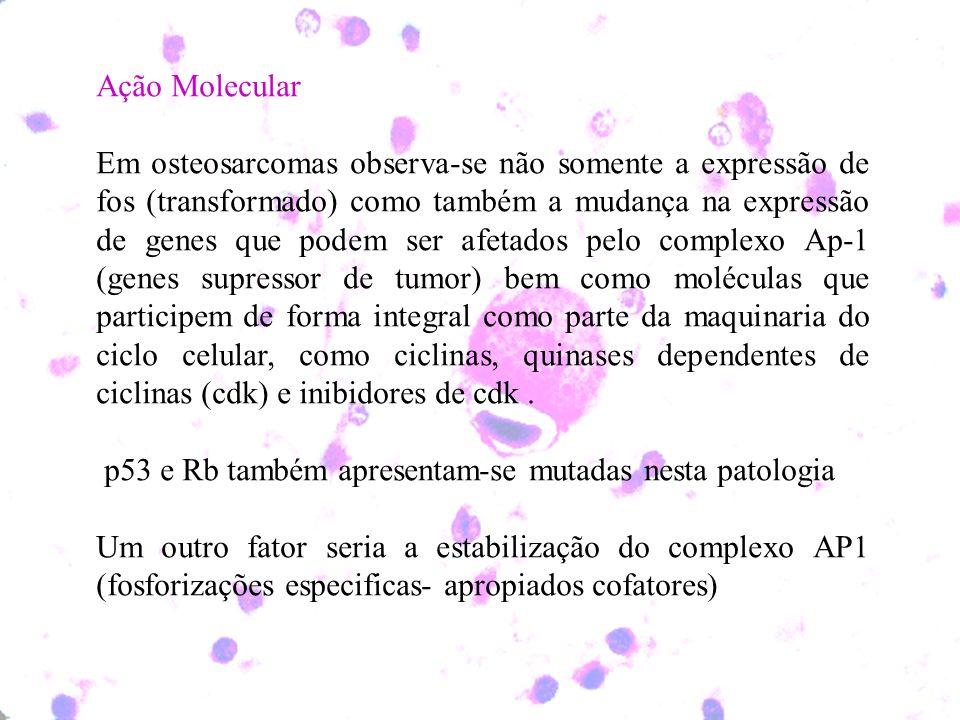Ação Molecular