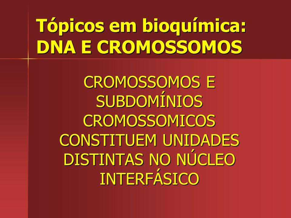 Tópicos em bioquímica: DNA E CROMOSSOMOS